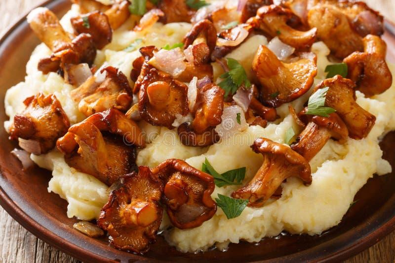 Gebraden cantharel bospaddestoelen met fijngestampt aardappelsclose-up op een plaat horizontaal royalty-vrije stock afbeelding