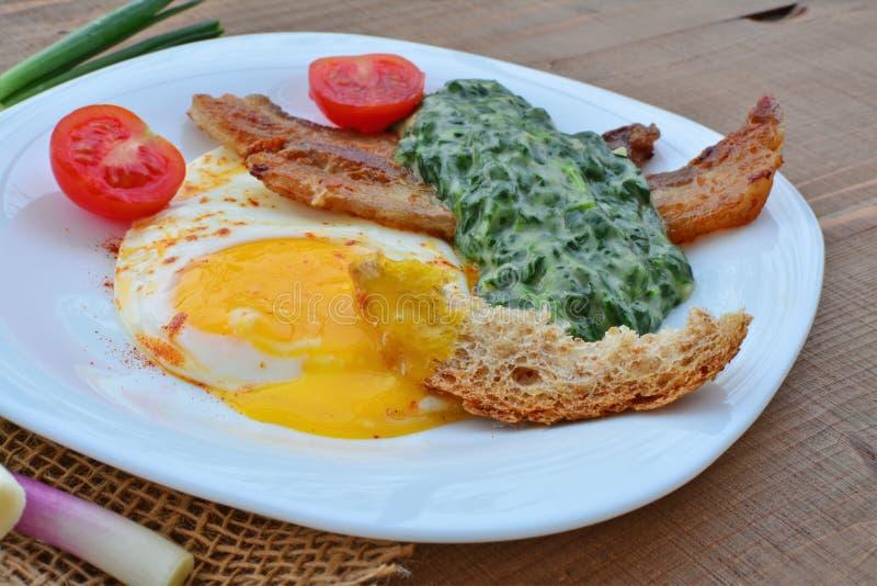 Gebraden ei met afgeroomd spinazie en baconontbijt stock fotografie