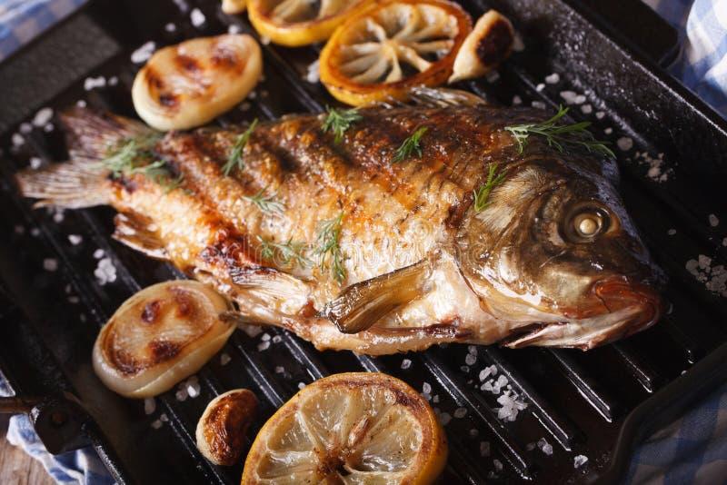 Gebraden vissenkarper met citroen en ui op grillpan stock afbeeldingen