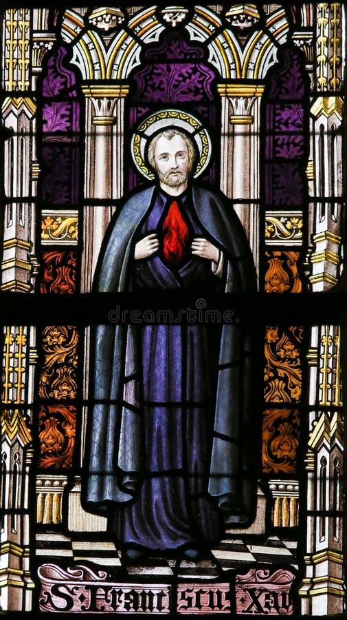Gebrandschilderd glas - Heilige Francis Xavier royalty-vrije stock fotografie