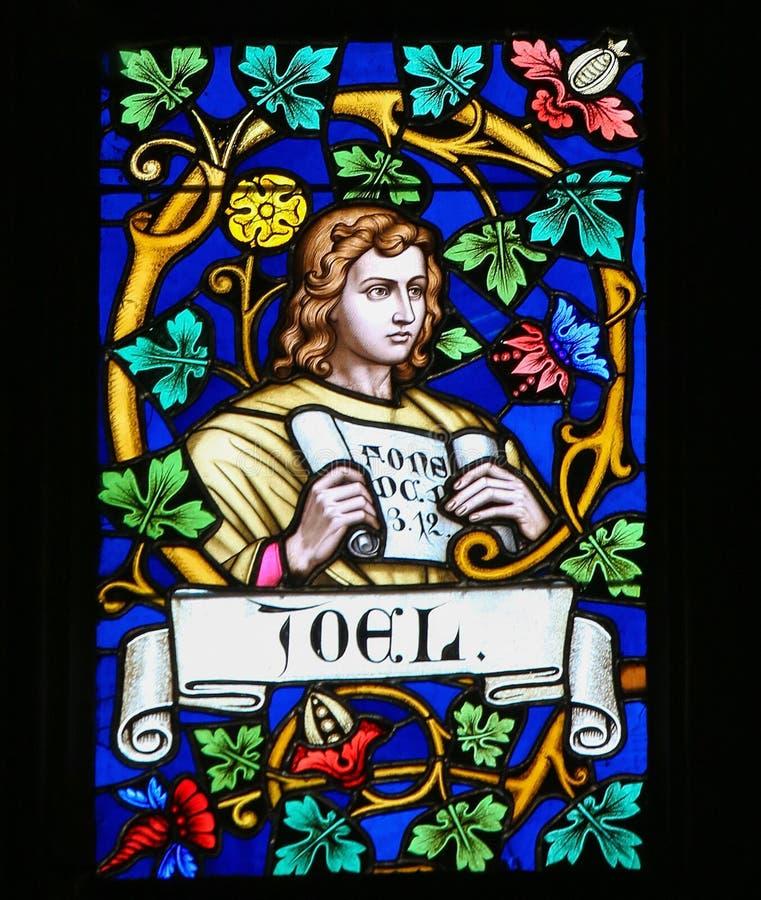 Gebrandschilderd glas - Joel stock foto's