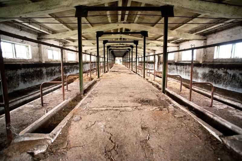 Gebrannter und verlassener Bauernhof stockfoto