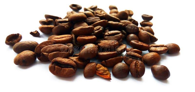 Gebratene braune Kaffeebohnen und Samen lokalisiert stockfoto