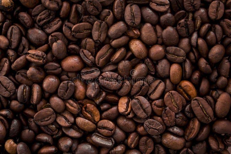 Gebratene braune Kaffeetasse des Kaffees beans lizenzfreie stockbilder