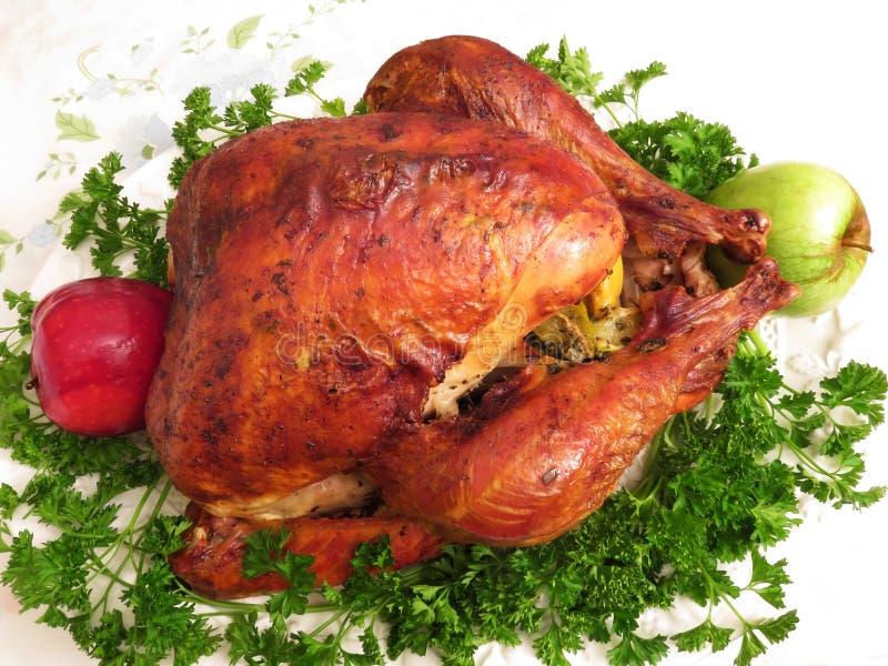 Gebratene Danksagung die Türkei bereit zum Abendessen lizenzfreie stockfotos
