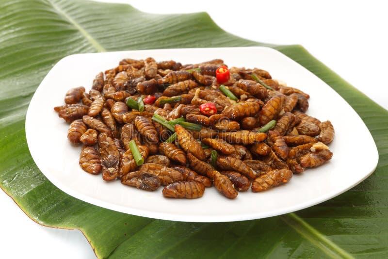 Gebratene essbare Insekten auf weißer Platte und grünem Blatt lizenzfreies stockbild