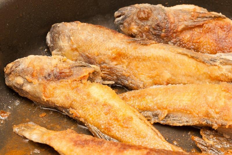 Download Gebratene Fische In Einer Bratpfanne Stockbild - Bild von gebraten, schmieröl: 96925505