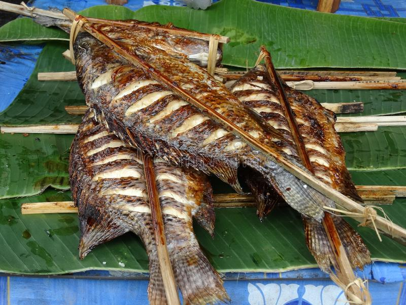 Gebratene Fische am Freilichtmarkt, Luang Prabang, Laos lizenzfreie stockfotografie