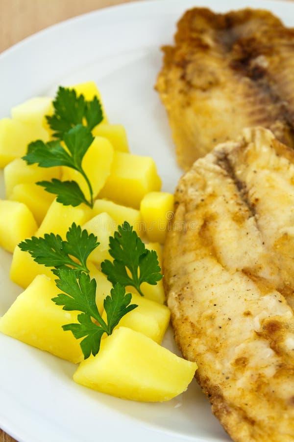 Download Gebratene Fische Mit Gekochten Kartoffeln Stockbild - Bild von betriebsbereit, mittagessen: 27726085