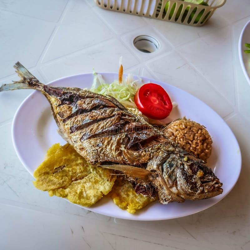 Gebratene Fische mit Kokosnussreis, karibische Nahrung lizenzfreie stockfotos