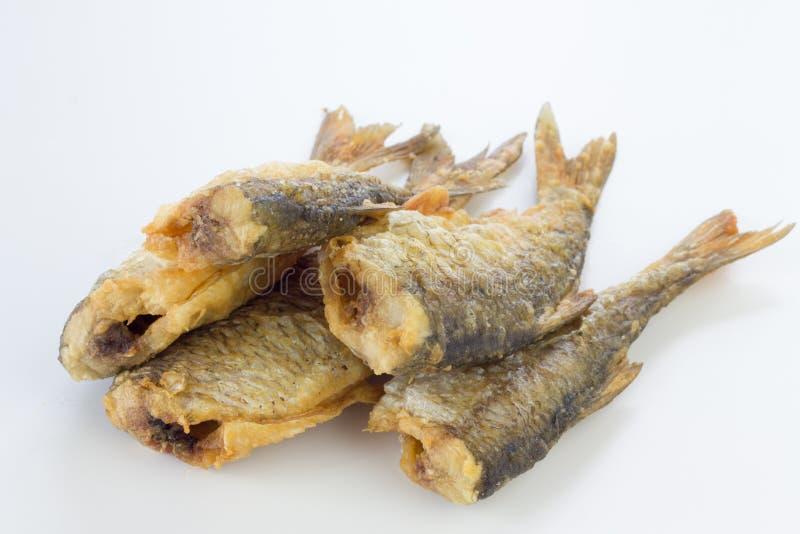 Gebratene Hinterwellenfische stockfoto