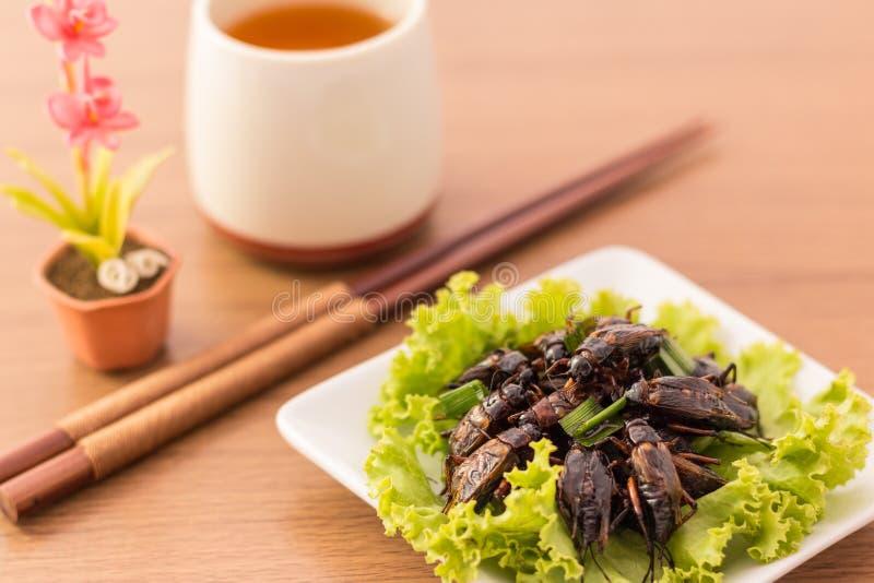 Gebratene Insekte lizenzfreie stockfotografie