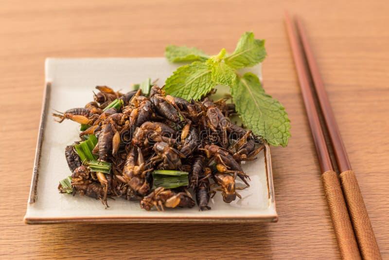 Gebratene Insekte stockfotos