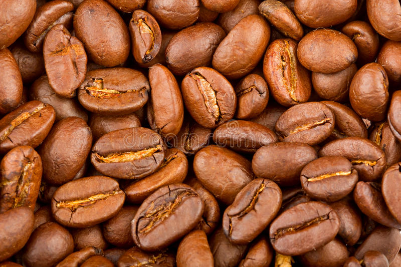 Gebratene Kaffeebohne-Extremnahaufnahme lizenzfreies stockbild