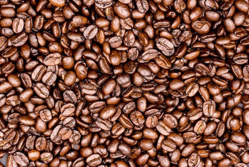 Gebratene Kaffeebohnen, können als Hintergrund benutzt werden stockfotografie