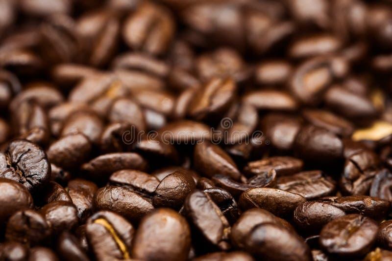 Gebratene Kaffeebohnen, können als Hintergrund benutzt werden stockfoto
