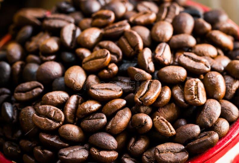 Gebratene Kaffeebohnen, können als Hintergrund benutzt werden stockbilder