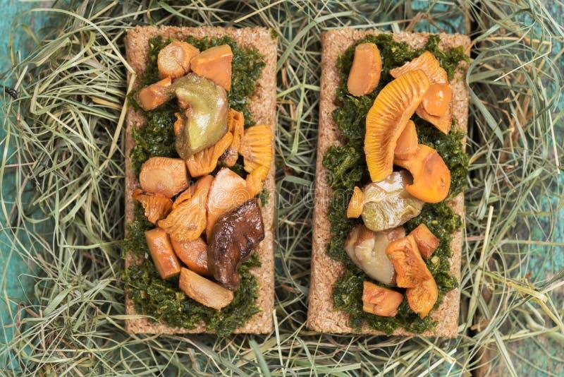 Gebratene porcini und Pfifferlingspilze auf Roggencrackern mit gre lizenzfreie stockfotografie