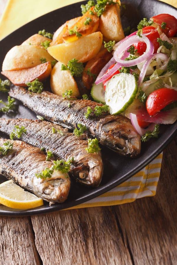 Gebratene Sardinen mit Kartoffeln und Frischgemüsesalatnahaufnahme lizenzfreies stockbild