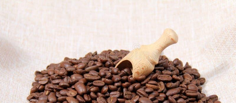 Gebratener Kaffee stockbilder