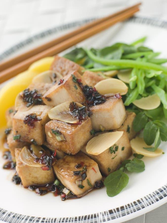 Gebratener Tofu mit karamellisierter Soße lizenzfreies stockbild