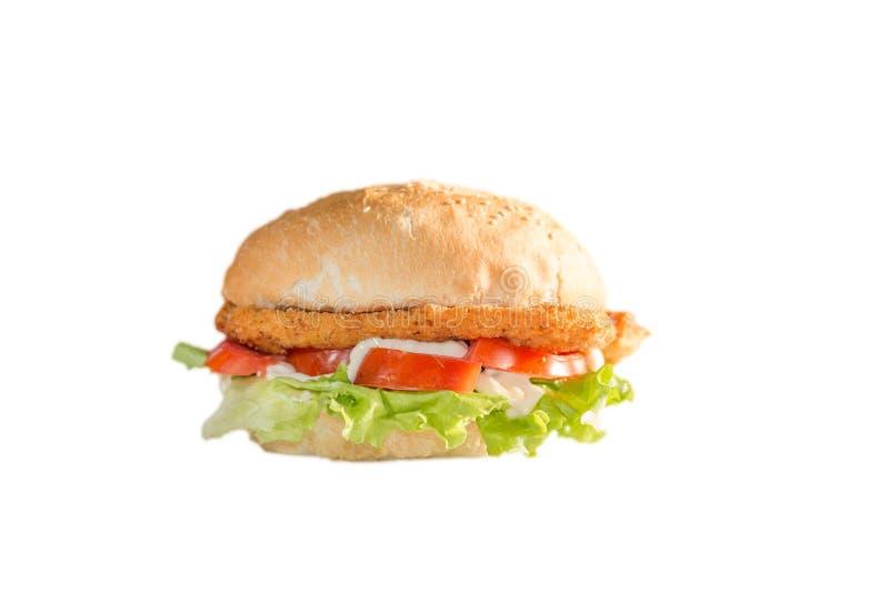 Gebratenes belegtes Brot mit Hühnerfleisch auf weißem Hintergrund lizenzfreies stockfoto