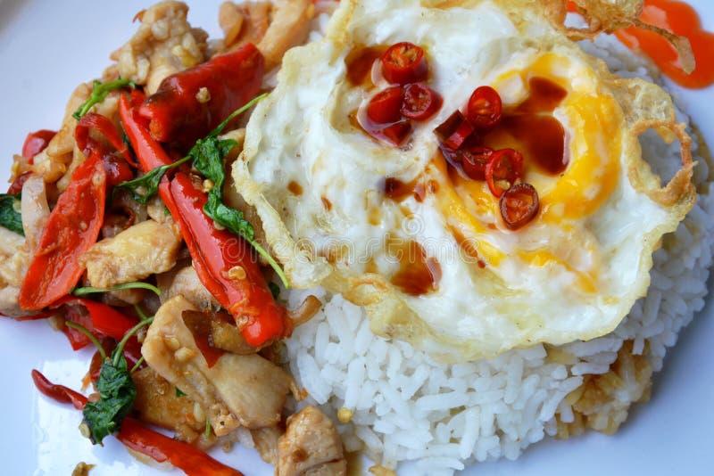 Gebratenes Huhn des würzigen Aufruhrs mit Basilikumblatt und thailändischer einfacher Lieblingsmahlzeit des Eies auf Platte stockfotografie