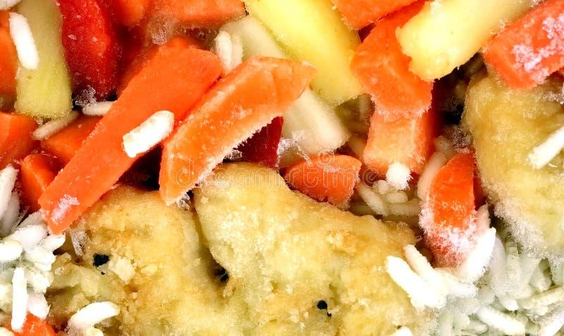 Gebratenes Huhn-Frucht-Gemüse-Fertiggericht eingefroren lizenzfreies stockfoto