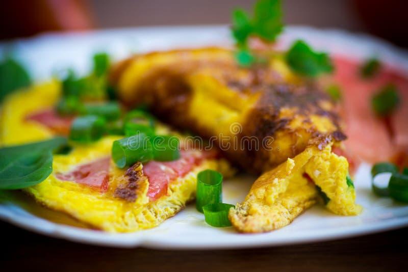 Gebratenes Omelett von den selbst gemachten Bio-Eiern mit Tomaten und Frühlingszwiebeln stockbilder