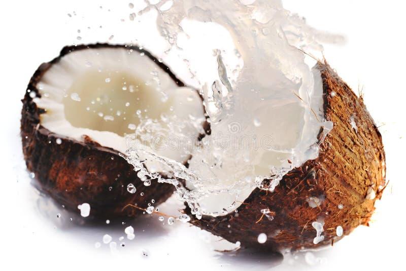 Gebrochene Kokosnuss mit Spritzen stockbild