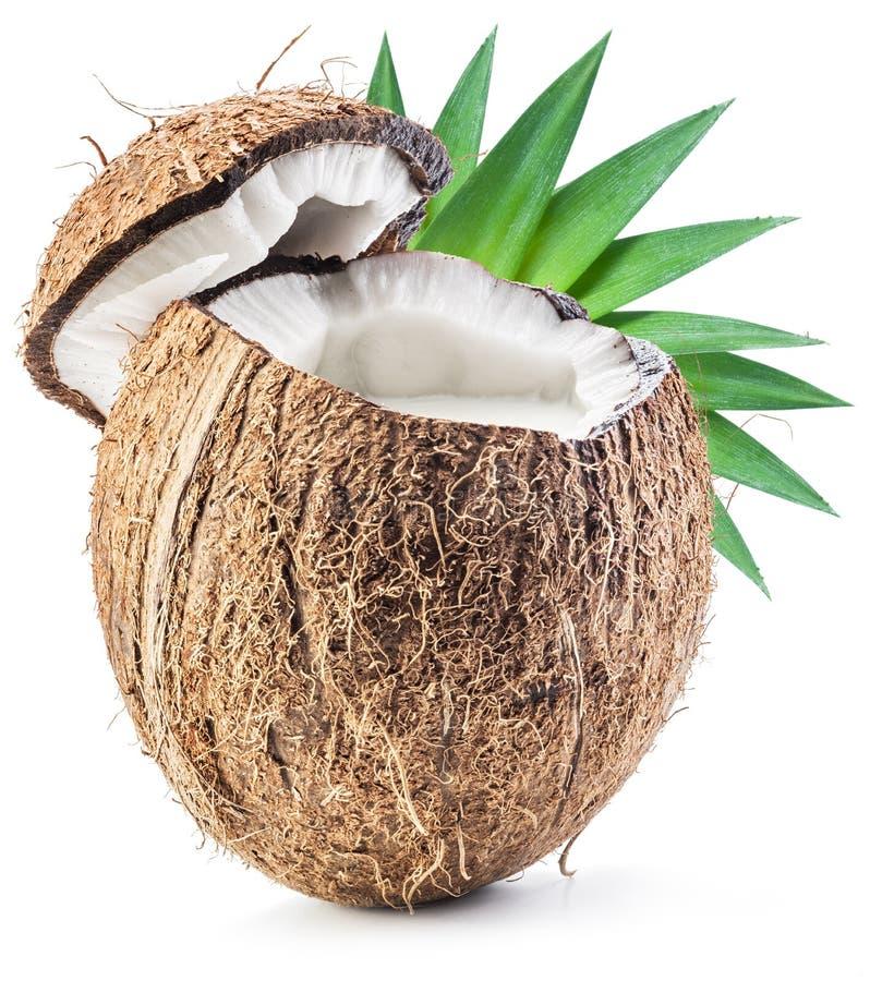 Gebrochene Kokosnussfrucht mit Kokosmilch nach innen lizenzfreies stockfoto