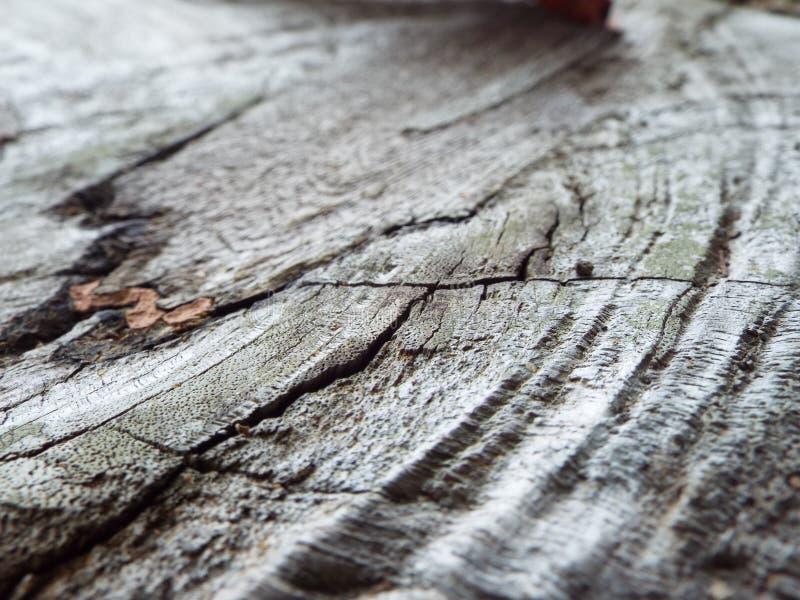 Gebrochene Linie Muster auf einer hölzernen Planke stockfotos