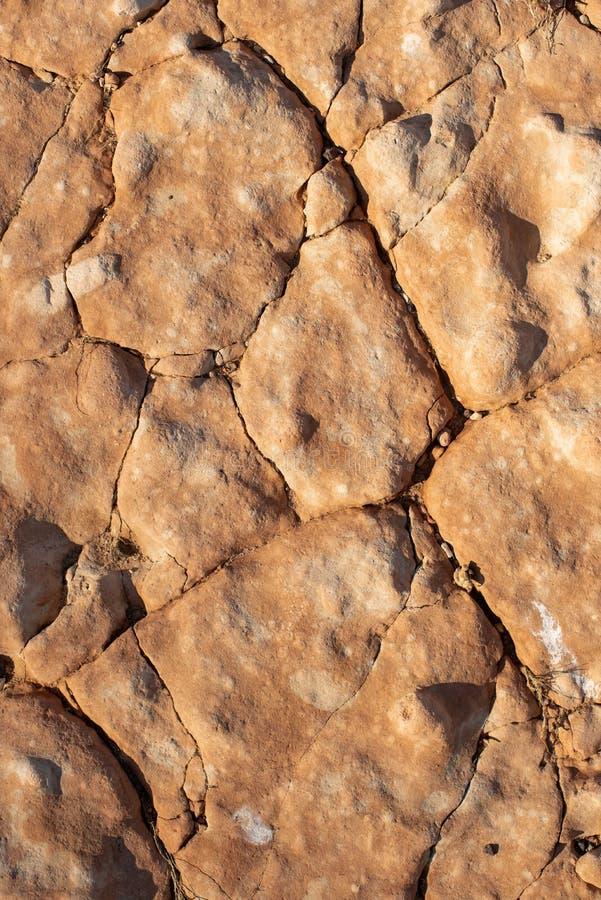 Gebrochener versteinerter Tonboden als Hintergrund stockfotos