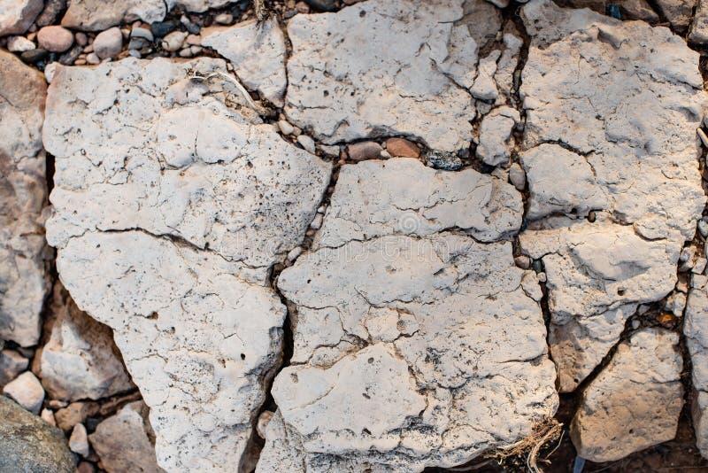 Gebrochener versteinerter Tonboden als Hintergrund lizenzfreie stockfotos