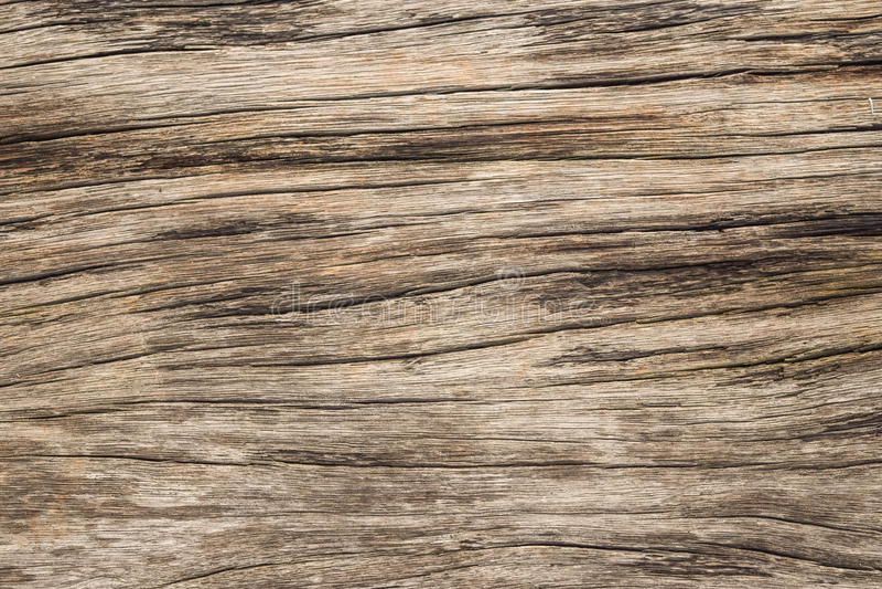 Gebrochenes Holz lizenzfreies stockfoto