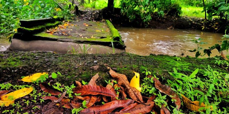 Gebroken brug toe te schrijven aan regen stock fotografie