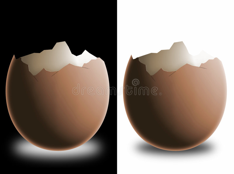 Gebroken eierschaal stock illustratie
