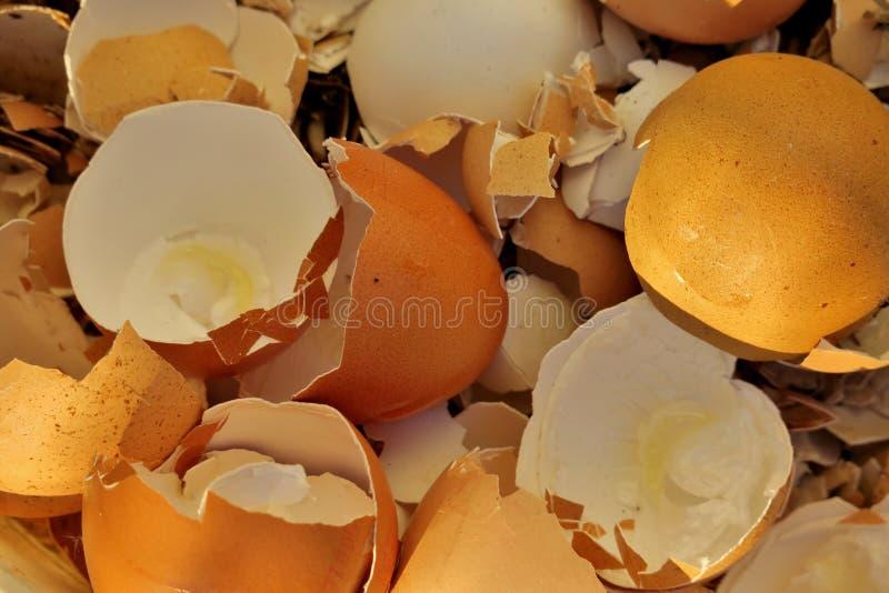 Gebroken eierschaal na eieren dicht omhoog stock afbeelding