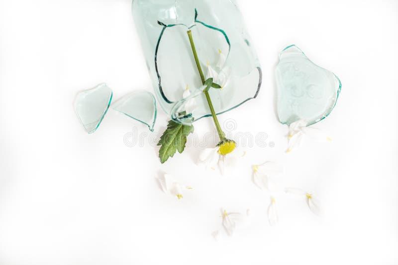 Gebroken glas, een bloem in een gebroken vaas Het concept ongelukkige liefde, zorg en scheuren royalty-vrije stock foto
