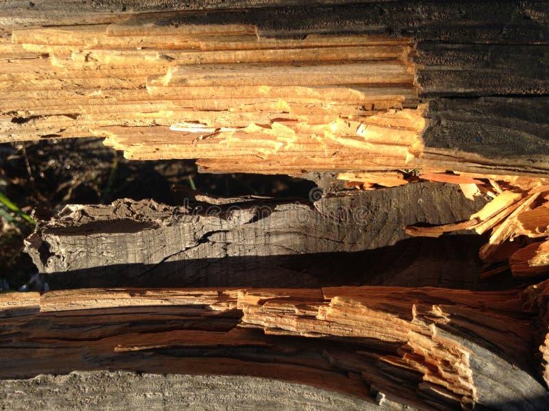 Gebroken houten omheining die een mening verstrekt royalty-vrije stock afbeeldingen
