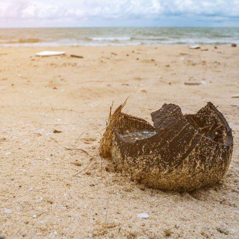 Gebroken kokosnotenshell royalty-vrije stock fotografie