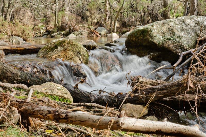 Gebroken takken en een waterval in La Pedriza stock fotografie