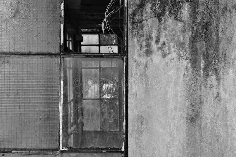 Gebroken vensters en beschimmelde muur royalty-vrije stock fotografie
