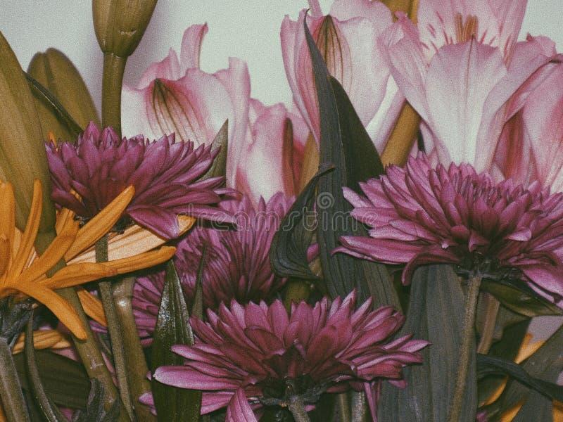 Geburtstagsblumen stockbild