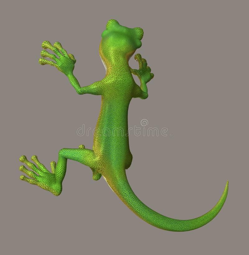 gecko royaltyfri illustrationer
