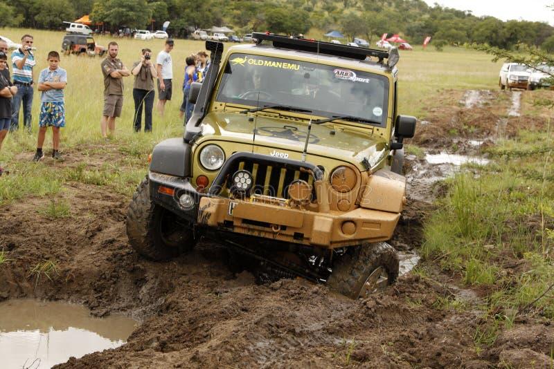 Gecko-Perlen-Grün Jeep Wrangler Rubicon stockfoto
