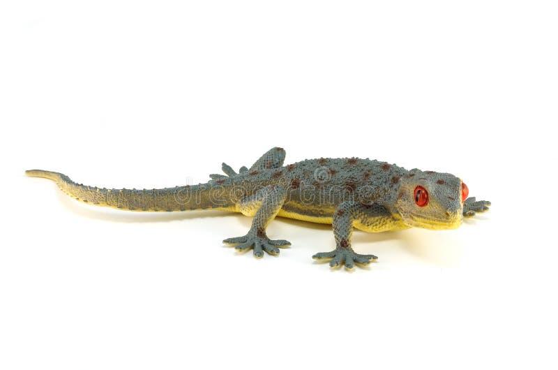 Geckospielzeug lizenzfreie stockfotos