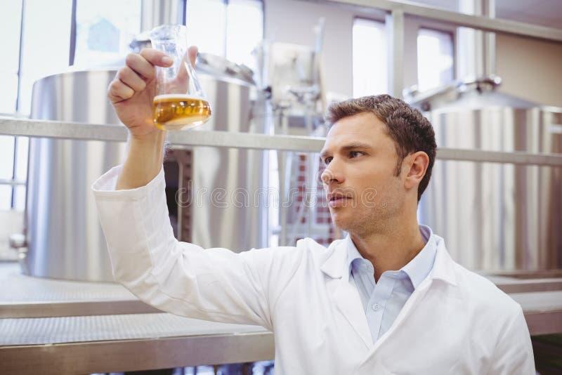 Geconcentreerde wetenschapper die beker met bier onderzoeken stock afbeeldingen