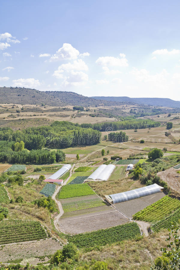 Gecultiveerd land in een landelijk landschap royalty-vrije stock foto