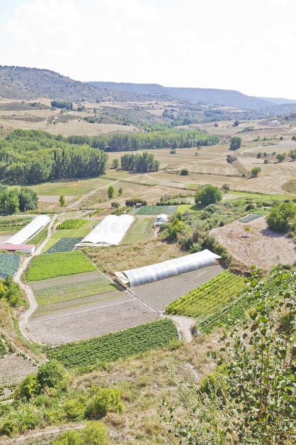 Gecultiveerd land in een landelijk landschap stock foto's